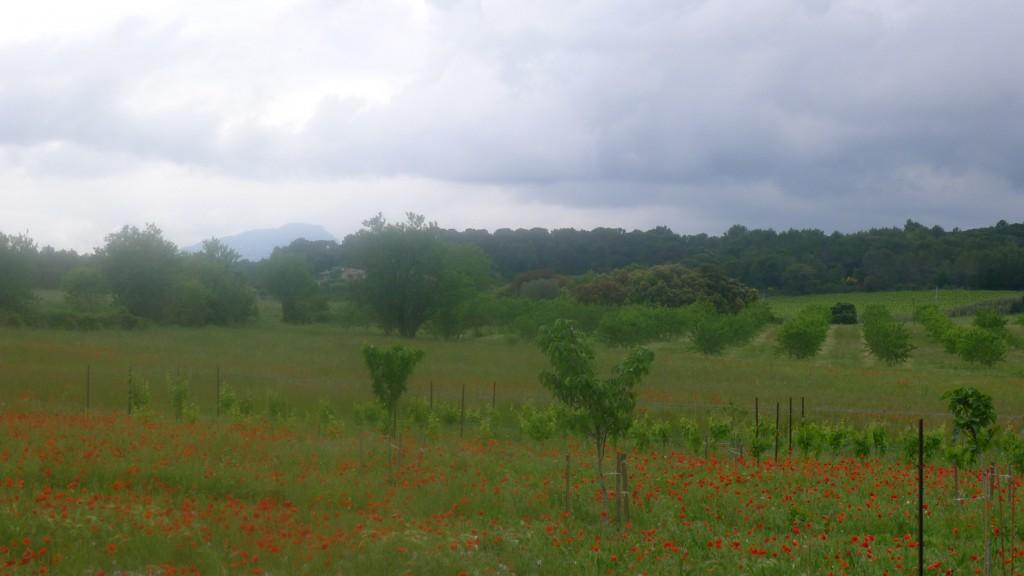 paysage mauvais temps